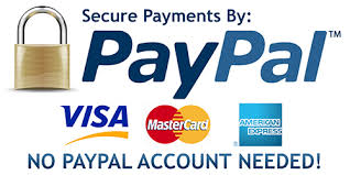 paypal-logo-pay-now-2.jpg